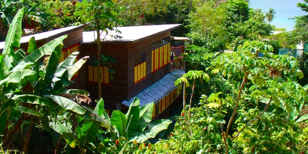 Dominica Rainforest Accommodations